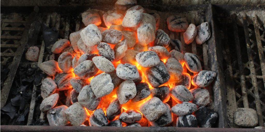 Opportunités d'affaires dans le biogaz et charbon écologique